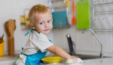 Kids Recipes Projects Istis quidem ipsis verbis